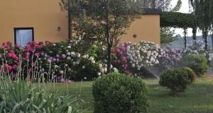 campobaregllo-gallery18