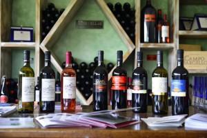campobargello wine25